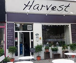 Das Harvest in Wien von außen
